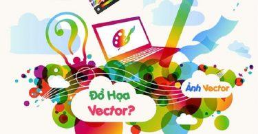vector-la-gi